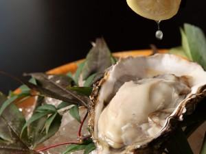 ★牡蠣とレモン_JALAN_121118