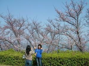 桜と一緒にはい!ポーズ