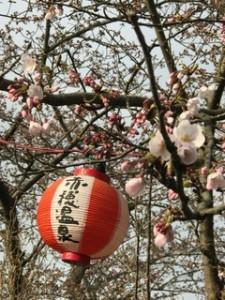 赤穂御崎の桜4月5日
